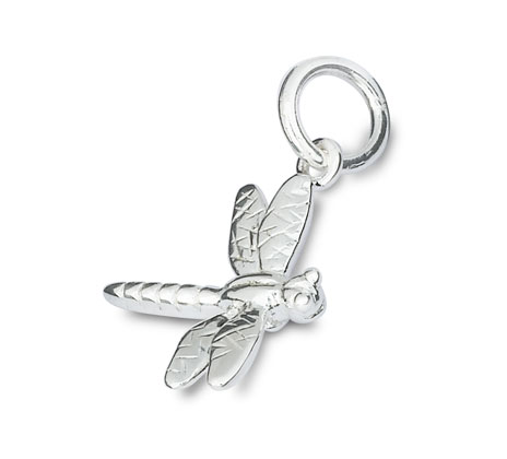 Silver dragonfly charm